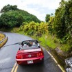 Driving the road to Hana is a highlight of a vacation in Maui.